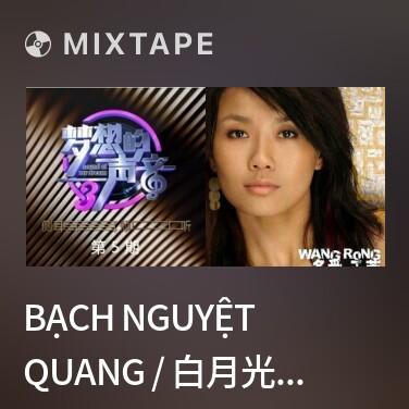 Mixtape Bạch Nguyệt  Quang / 白月光 (Live)