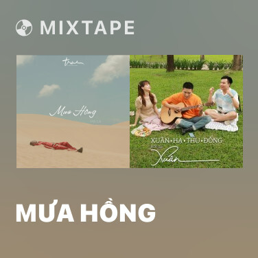 Radio Mưa Hồng - Various Artists