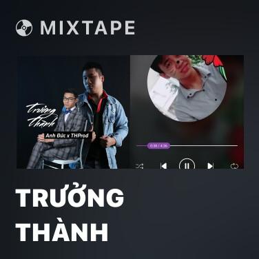 Mixtape Trưởng Thành - Various Artists