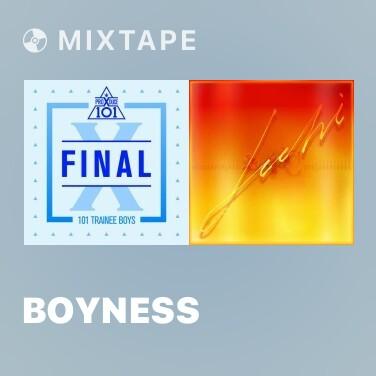 Mixtape Boyness - Various Artists