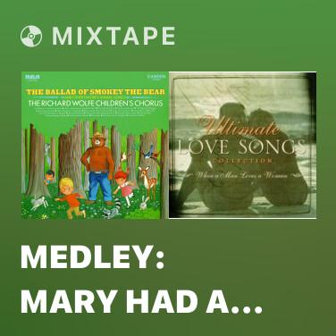 Mixtape Medley: Mary Had a Little Lamb / This Little Pig Went to Market / Baa Baa Black Sheep - Various Artists