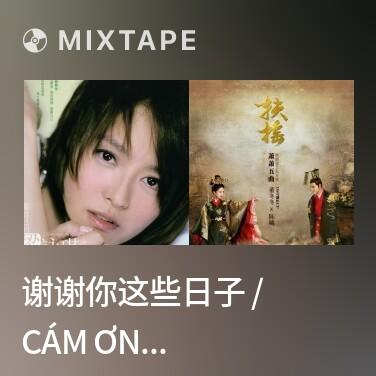 Mixtape 谢谢你这些日子 / Cám Ơn Những Ngày Này Của Anh - Various Artists