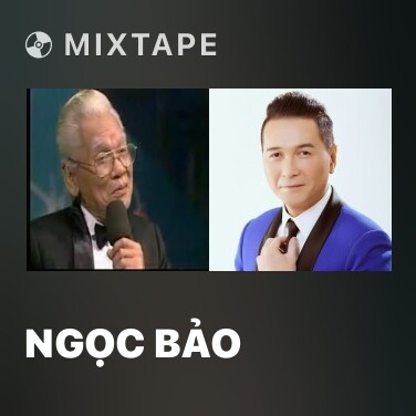Mixtape Ngọc Bảo - Various Artists