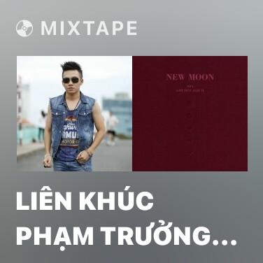 Mixtape Liên Khúc Phạm Trưởng 2010 - Various Artists