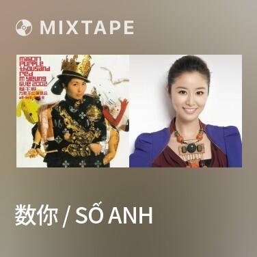 Mixtape 数你 / Số Anh - Various Artists