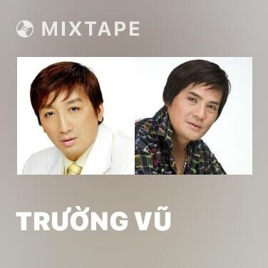 Radio Trường Vũ - Various Artists