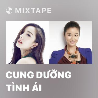 Mixtape Cung Dưỡng Tình Ái - Various Artists