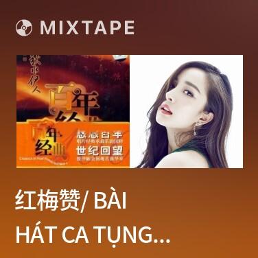 Mixtape 红梅赞/ Bài Hát Ca Tụng Hồng Mai - Various Artists