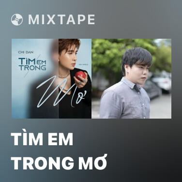 Mixtape Tìm Em Trong Mơ - Various Artists
