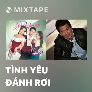 Mixtape Tình Yêu Đánh Rơi - Various Artists