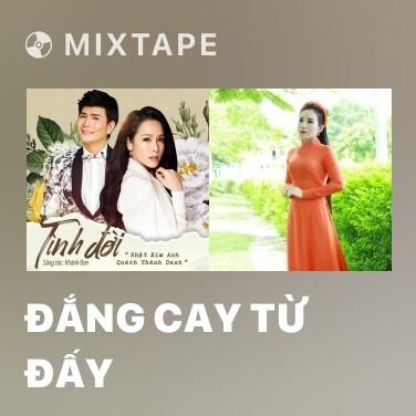 Mixtape Đắng Cay Từ Đấy - Various Artists