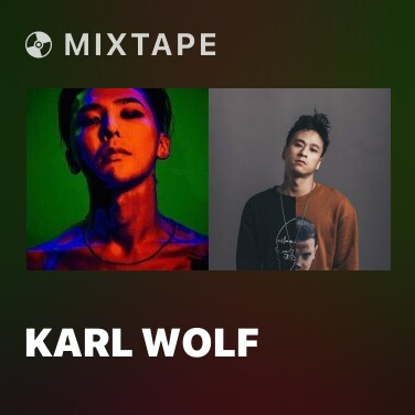 Radio Karl Wolf - Various Artists