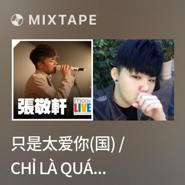 Radio 只是太爱你(国) / Chỉ Là Quá Yêu Em (Mandarin) - Various Artists