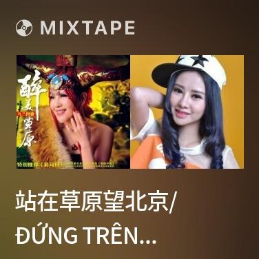 Radio 站在草原望北京/ Đứng Trên Thảo Nguyên Ngắm Bắc Kinh - Various Artists