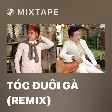 Radio Tóc Đuôi Gà (Remix) - Various Artists