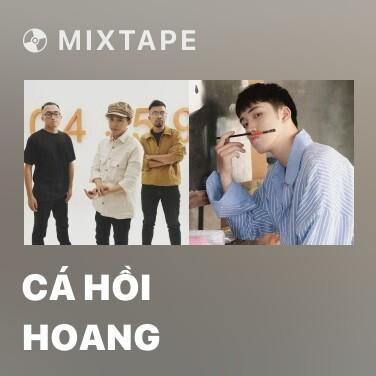 Mixtape Cá Hồi Hoang - Various Artists
