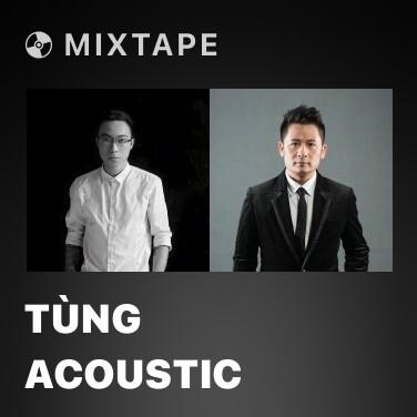 Mixtape Tùng Acoustic - Various Artists