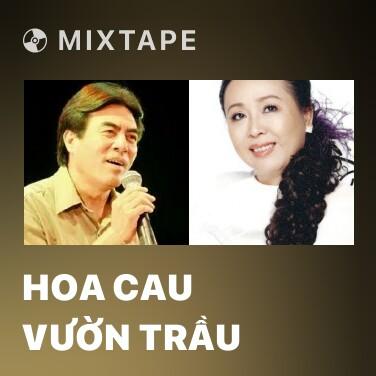 Mixtape Hoa Cau Vườn Trầu - Various Artists