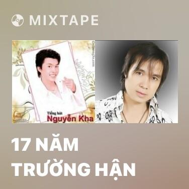 Radio 17 Năm Trường Hận - Various Artists