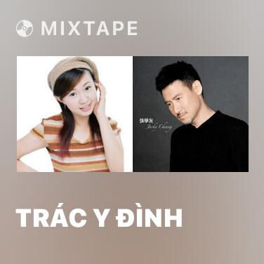 Mixtape Trác Y Đình - Various Artists