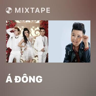 Radio Á Đông - Various Artists