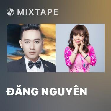 Radio Đăng Nguyên - Various Artists