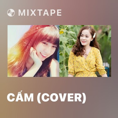 Radio Cấm (Cover) - Various Artists