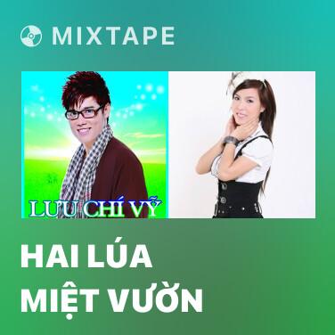 Mixtape Hai Lúa Miệt Vườn - Various Artists