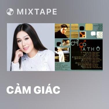 Mixtape Cảm Giác - Various Artists