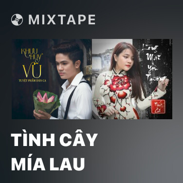 Mixtape Tình Cây Mía Lau - Various Artists