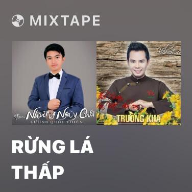 Mixtape Rừng Lá Thấp - Various Artists