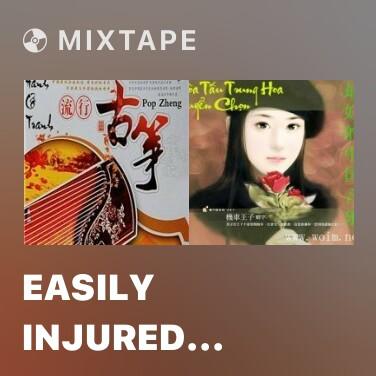 Mixtape Easily Injured Woman -