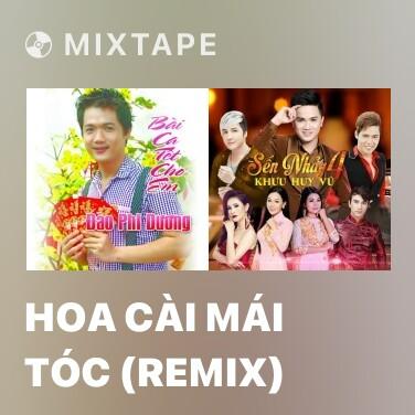 Radio Hoa Cài Mái Tóc (Remix) - Various Artists