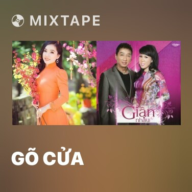 Radio Gõ Cửa - Various Artists