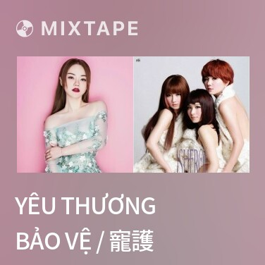Mixtape Yêu Thương Bảo Vệ / 寵護 - Various Artists