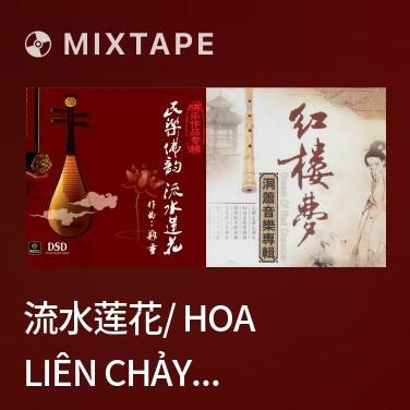 Radio 流水莲花/ Hoa Liên Chảy Nước - Various Artists