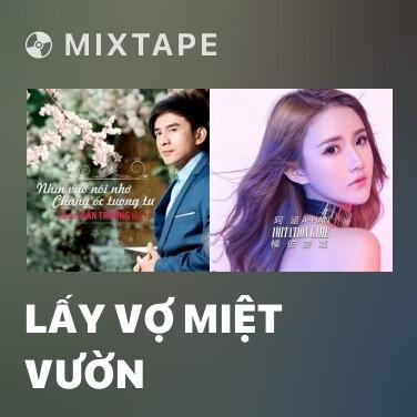 Mixtape Lấy Vợ Miệt Vườn - Various Artists