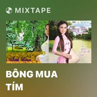 Mixtape Bông Mua Tím - Various Artists