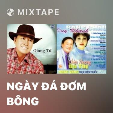 Mixtape Ngày Đá Đơm Bông
