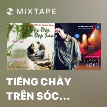Mixtape Tiếng Chày Trên Sóc Bom Bo