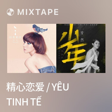 Mixtape 精心恋爱 / Yêu Tinh Tế - Various Artists
