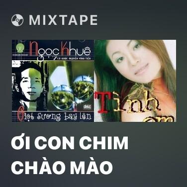 Radio Ơi Con Chim Chào Mào - Various Artists