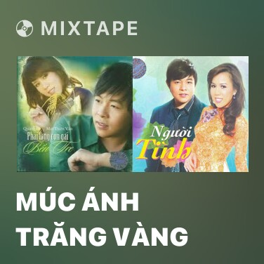 Mixtape Múc Ánh Trăng Vàng - Various Artists