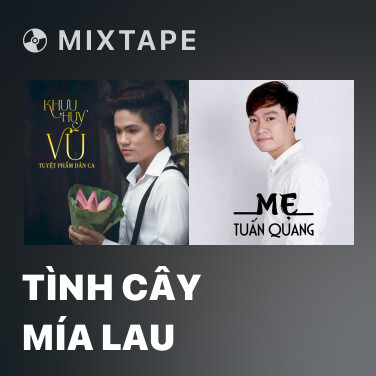 Radio Tình Cây Mía Lau - Various Artists
