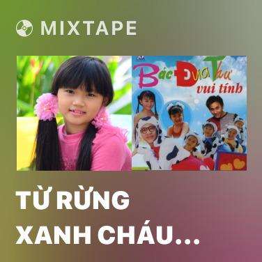 Radio Từ Rừng Xanh Cháu Về Thăm Lăng Bác - Various Artists