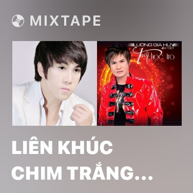 Mixtape Liên Khúc Chim Trắng Mồ Côi - Mấy Nhịp Cầu Tre (Remix) - Various Artists