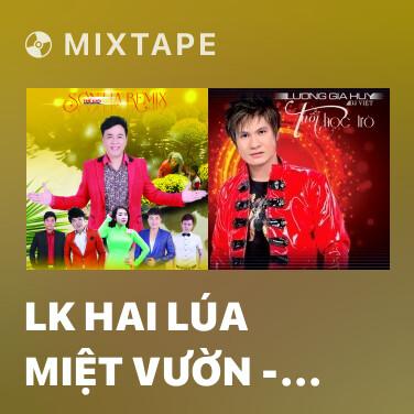Mixtape LK Hai Lúa Miệt Vườn - Dây Đủng Đỉnh Buồn - Anh Ba Khía (Remix) - Various Artists