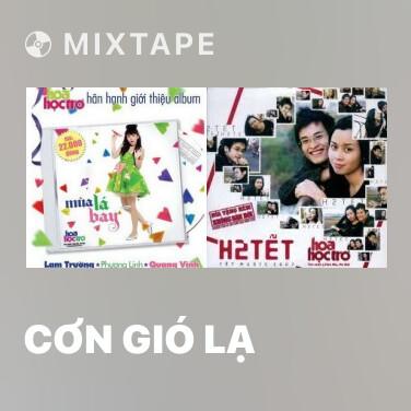 Radio Cơn Gió Lạ - Various Artists
