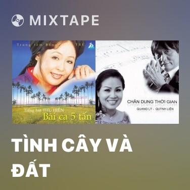 Mixtape Tình Cây Và Đất - Various Artists