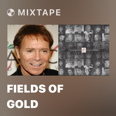 Radio Fields Of Gold - Various Artists